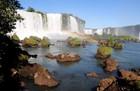 ブラジル側イグアスの滝では、イグアスの全景が見られます。