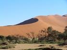 アフリカ大陸ナミビアに広がる世界最古の砂漠