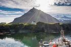 自然も動物も楽しめる美しいスナイフェルス半島ツアー
