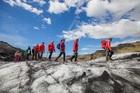 経験豊富な氷河ガイドが案内するので安心