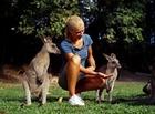 ワイルドハビタット動物園のカンガルー