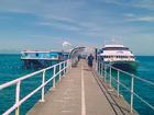 桟橋から見える海の蒼さにきっと驚くはず