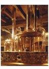 醸造所で小樽ビールができるまでの工程を見学。