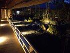夜の蓮華定院の景観は宿泊者限定