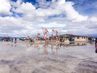 世界中の国旗が集まるプラヤブランカ