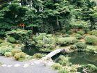 高野山「無量光院(むりょうこういん)」庭園
