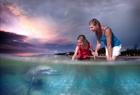 イルカの餌付けから見られる、環境への取り組み。