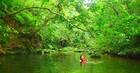 午前中は、カヌーや水遊びを通してマングローブの大自然をお楽しみください。