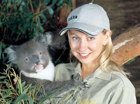 動物園でコアラと対面!
