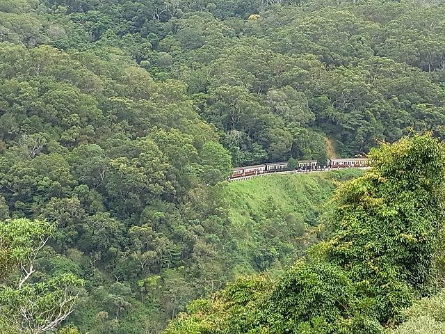 ゴンドラからは人気のキュランダ列車が見れることも!