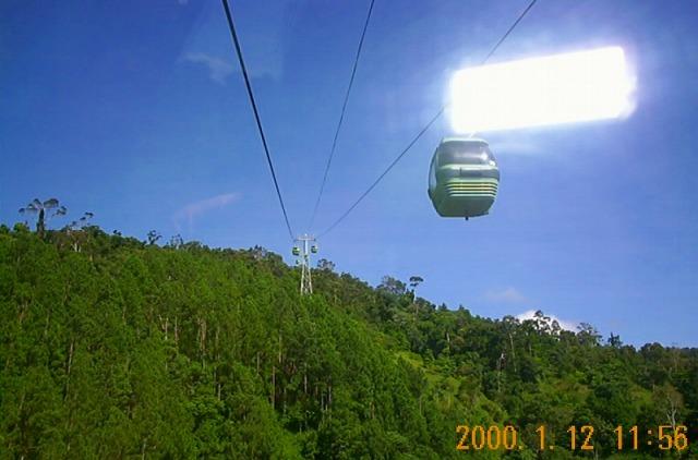空から熱帯雨林を眺める