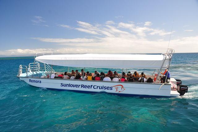 グラスボトムボートツアーにも無料で参加できます
