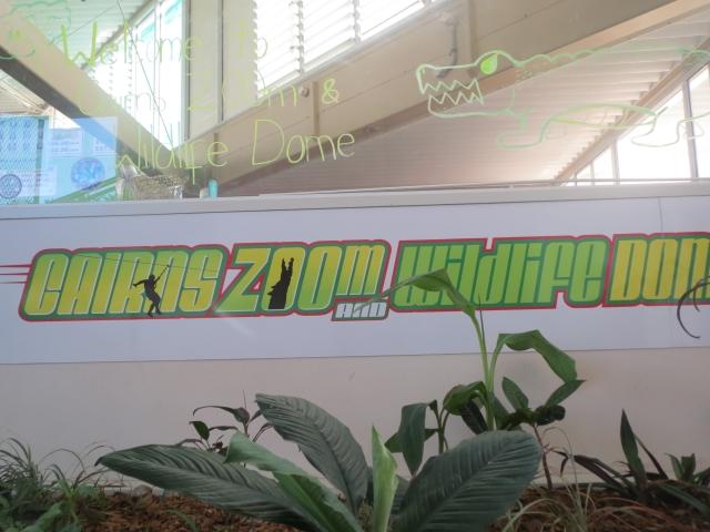 屋内動物園内に世界初!ロープコースが設置されました(別途費用にて)