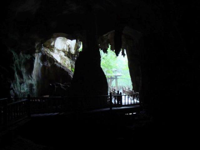 コウモリの洞窟