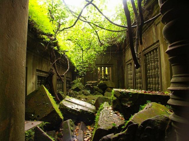 密林に眠る遺跡ベンメリア