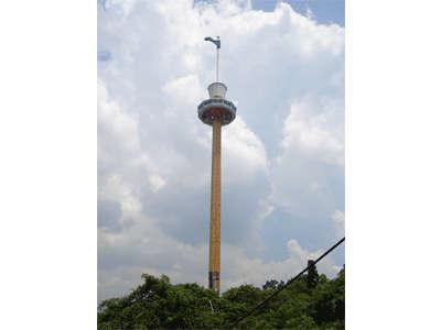 島内を一望できる「タイガースカイタワー」