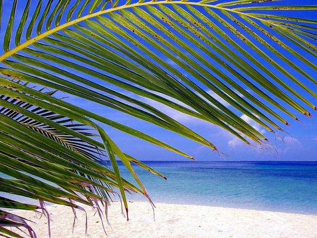 綺麗なビーチでのんびりと