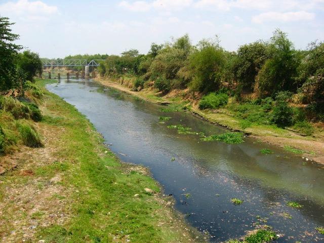 ソロ川 のんびりした風景・・・・