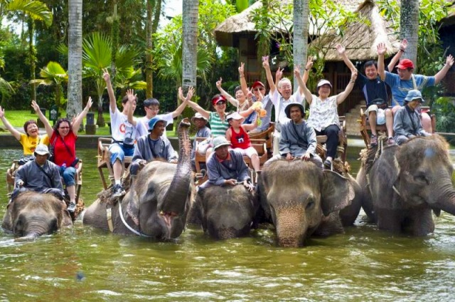 ELEPHANTRIDES
