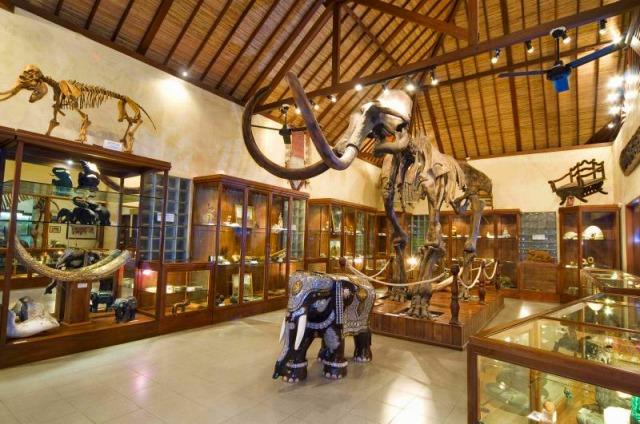 ElephantParkMuseum
