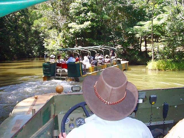 水陸両用車で熱帯雨林を探検