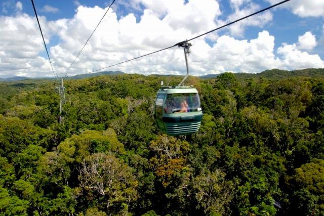熱帯雨林の森を見下ろしながら進むスカイレール