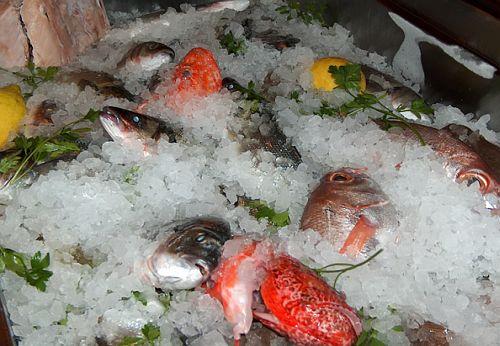 新鮮な魚介類が自慢