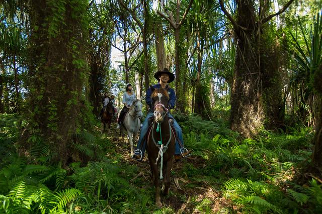 自然の中での乗馬