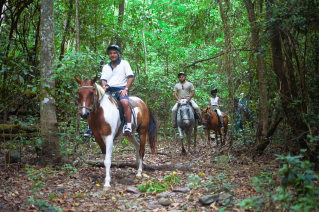 馬と呼吸を合わせて坂道を登ったり下ったり。