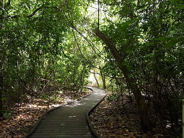 木陰での島内散歩が気持ちいい