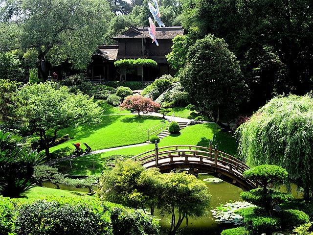 藤棚が出迎えてくれる日本庭園