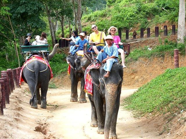 象にも乗れちゃうぞう!