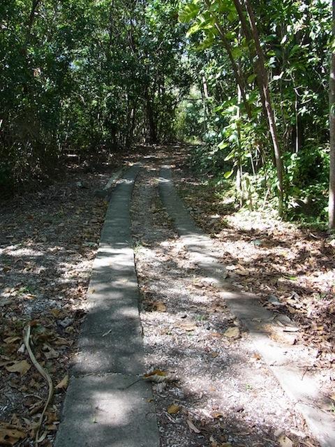 歩きやすいトレッキング道