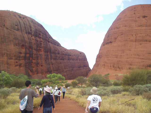 オルガ岩群で散策するのは人気のウォルパ渓谷エリア
