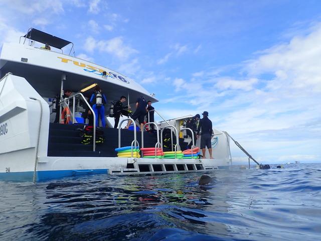 船の後部からダイブ開始
