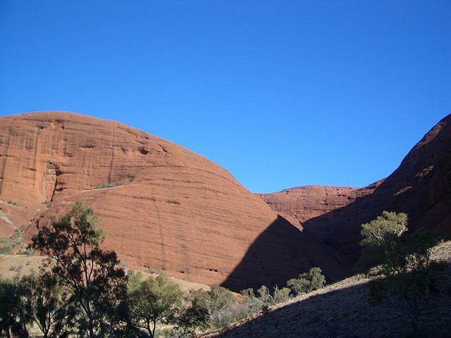 赤い岩肌と背の低い木が、まさにアウトバックという雰囲気