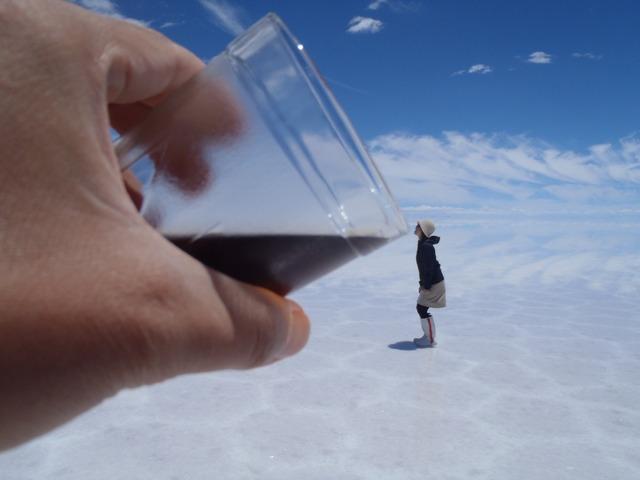 塩湖ならではのトリック写真