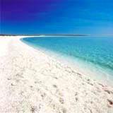 貝殻で一面覆われたシェルビーチ