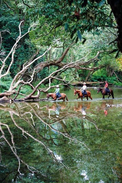 こんなきれいな景色の中での乗馬は最高!!