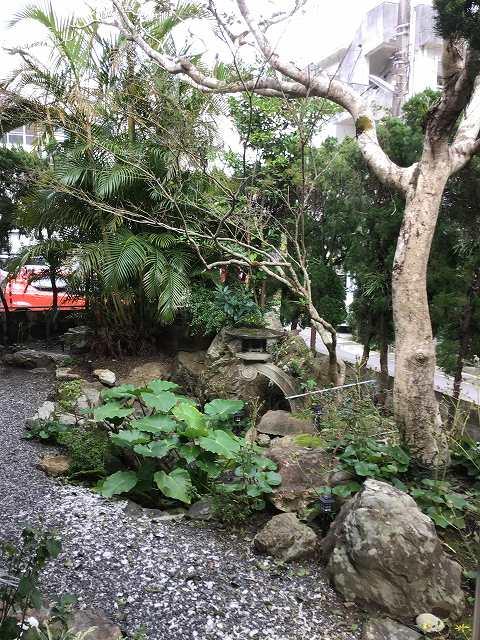 緑豊かなお庭の様子