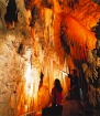 日本語ガイド付き ワイトモ洞窟付きロトルア行き 1日ツアー