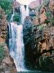リッチフィールド国立公園 1日ツアー
