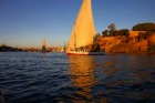 ファルーカ(ヨット)または、ボートで行くエレファンティネ島と植物園