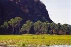 カカドゥ国立公園とアーネムランド 2日間 (5-11月)