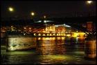 格安!!セーヌ川クルーズ + パリ・イルミネー ション観光 (日本語音声ガイド付)
