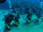 サイパンの海で体験ダイビング(2ビーチダイブ)