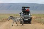 アフリカの大自然を訪れる タンザニア3泊4日の旅 -ンゴロンゴロ自然保護区・マニヤーラ湖 国立公園・タランギーレ 国立公園 [ナイロビ発]