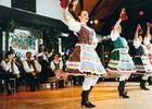 フォークロア・イブニングツアー ハンガリーの民族舞踊と3コースディナー&ブダペストの夜景