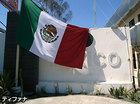 国境越えメキシコ・ティファナとカリフォルニア・サンディエゴ観光