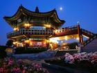 ソウル夜景とB級グルメツアー